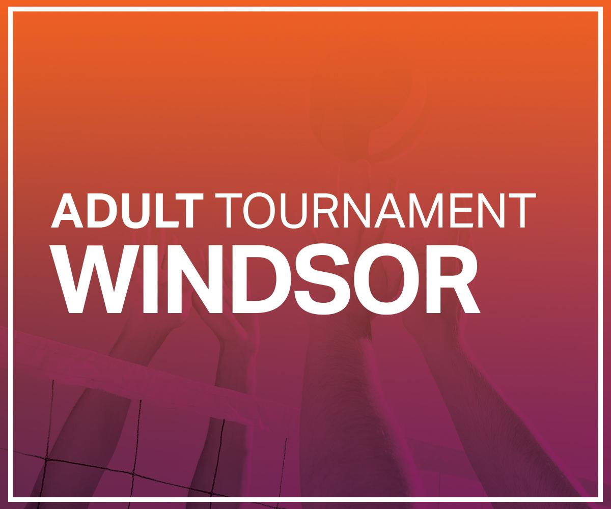 Beach Volley Ball Tournament Windsor